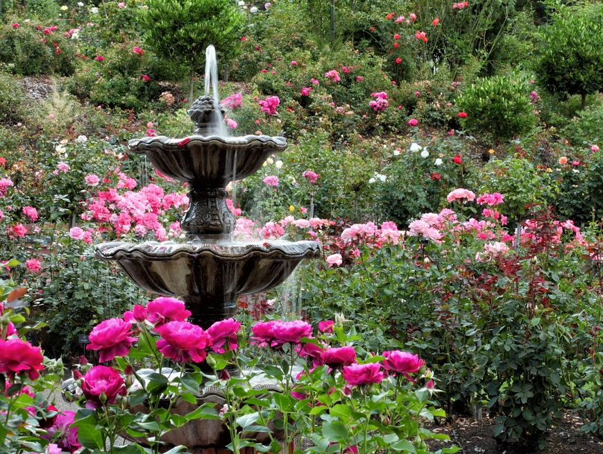 Prevent Mildew On Fountains